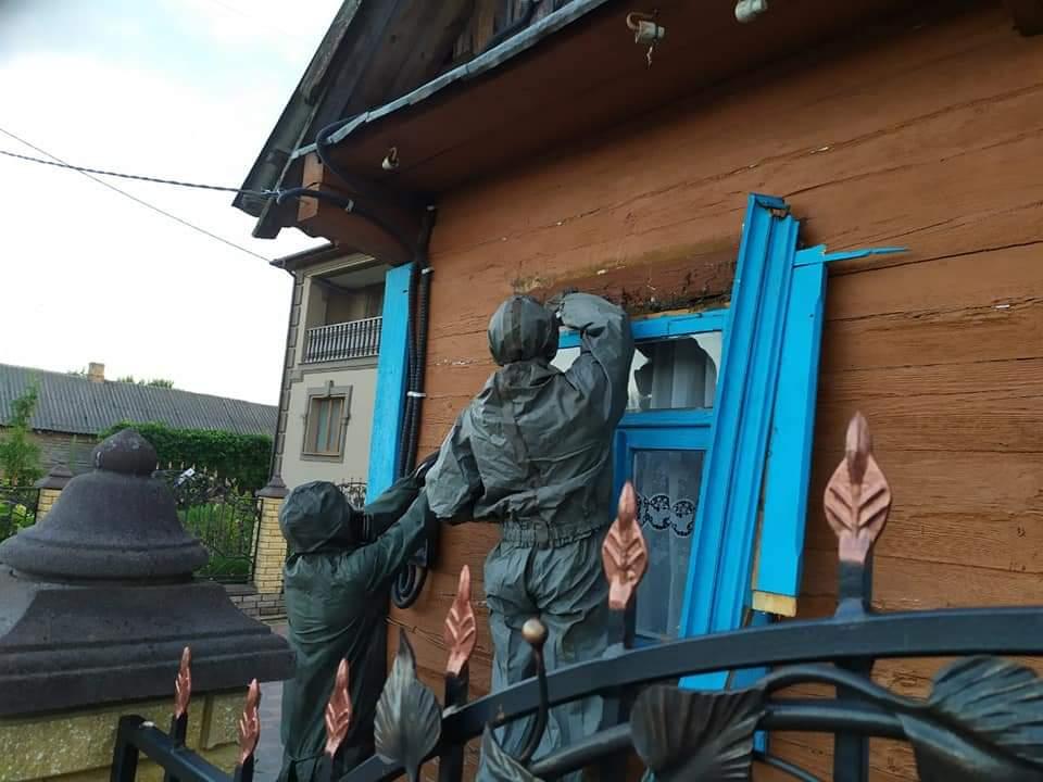На Дубровиччині рятувальники знешкодили кубло шершнів