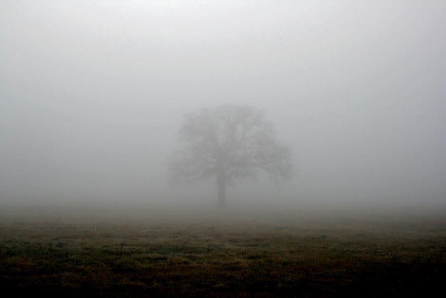 Туман та ожеледицю прогнозують на Рівненщині