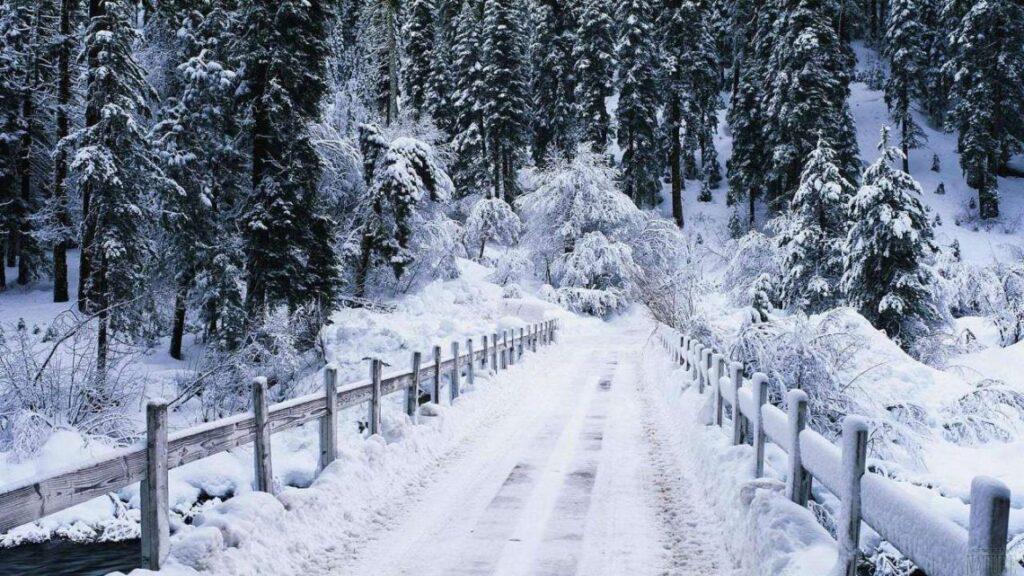 На Рівненщині прогнозують 20° морозу