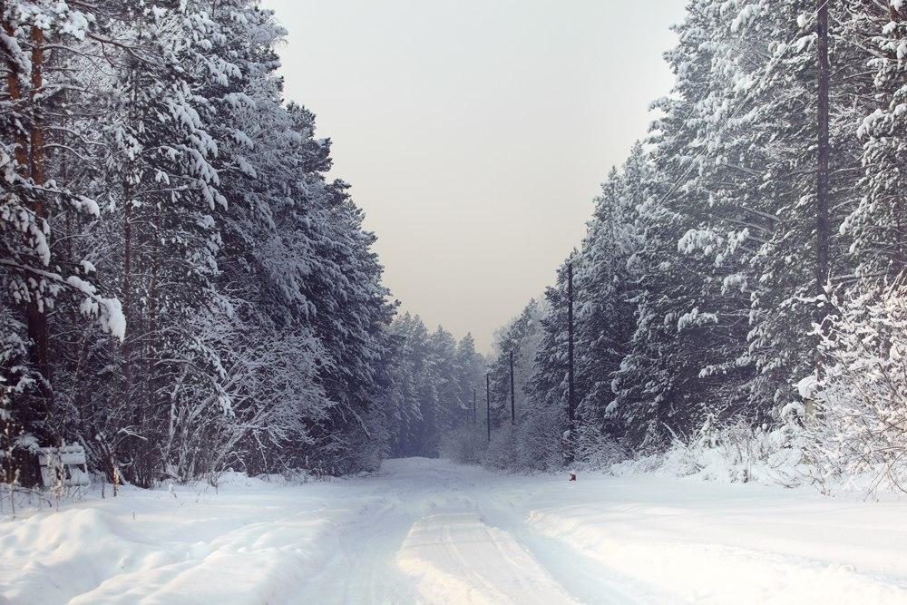 На Рівненщині прогнозують -3 °C морозу