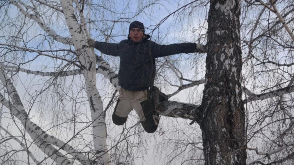 На Рівненщині чоловік упав з дерева і потрапив до лікарні