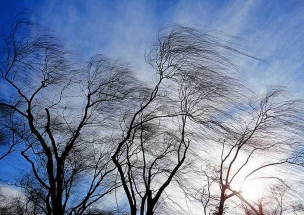 На Рівненщині прогнозують вітер та дощ