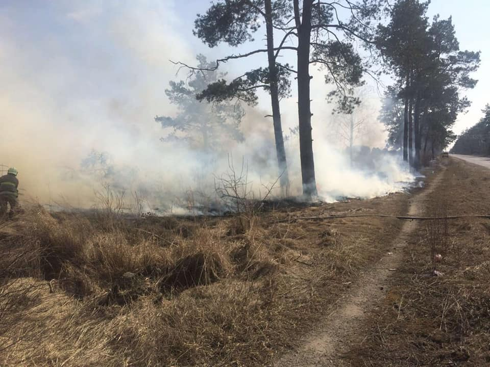 Не спалюйте сухостій: на Рівнещині ліквідовують пожежі