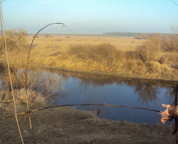 На озерах Рівненщини рибалки продовжують порушувати закон