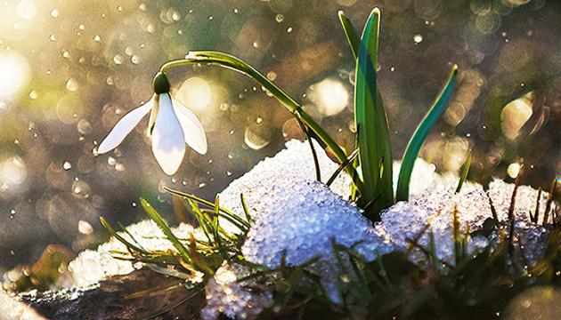 Заморозки та мокрий сніг прогнозують на Рівненщині