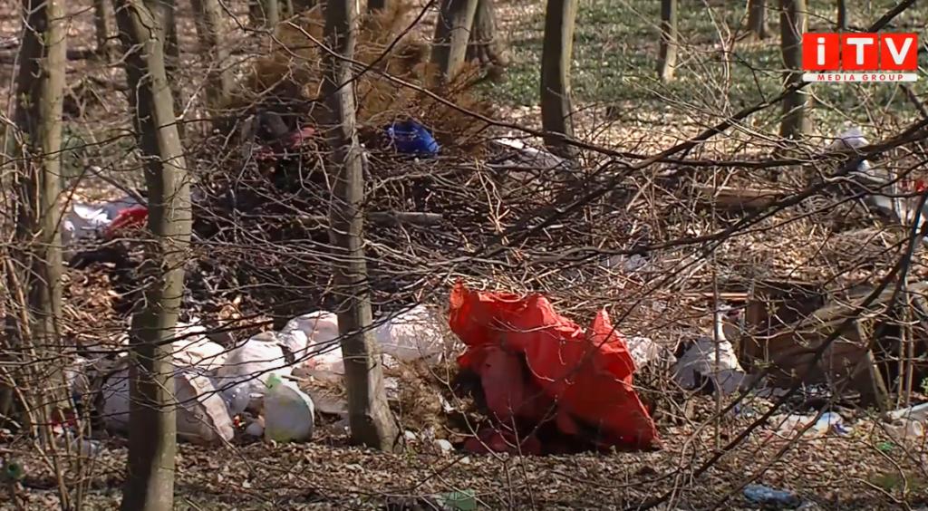 У лісі на Здолбунівщині зробили сміттєзвалище (ВІДЕО)