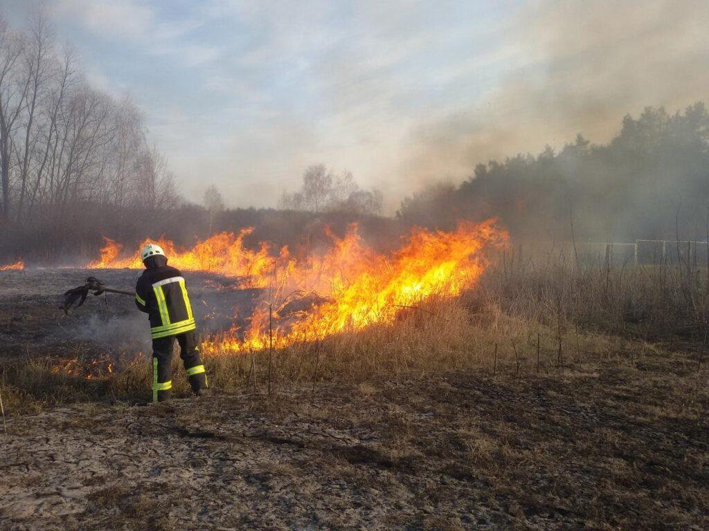 За минулу добу вогнеборці Рівненщини ліквідували п'ять пожеж сухої трави