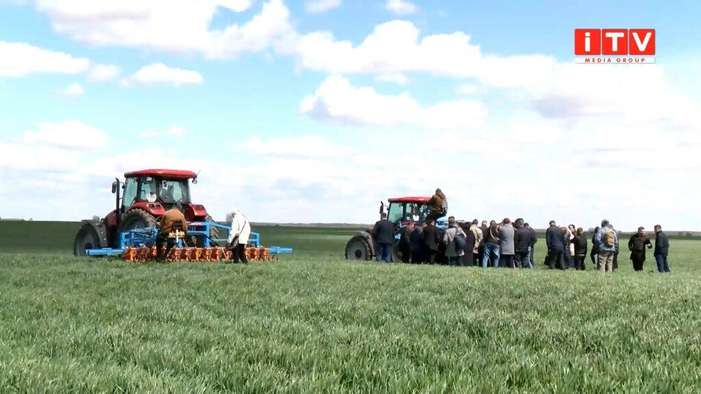 """На Гощанщині відзначили щорічний """"День поля"""" (ВІДЕО)"""