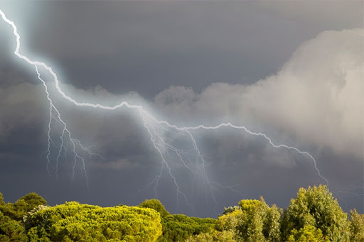 На Рівненщині прогнозують грози та сильний вітер