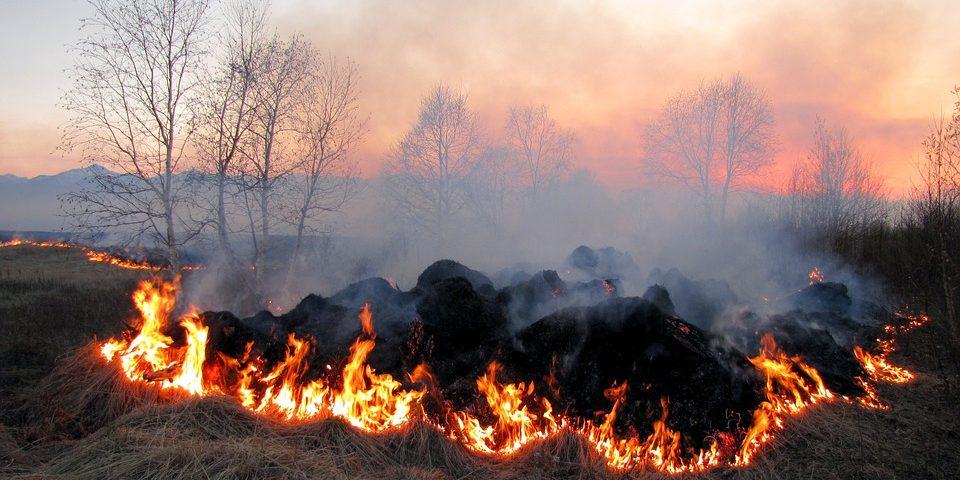 На Рівненщині попереджають про пожежну небезпеку